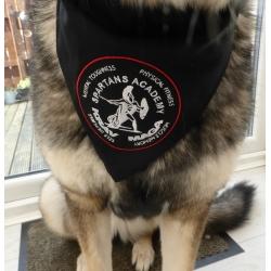 Official Spartans Dog Bandana
